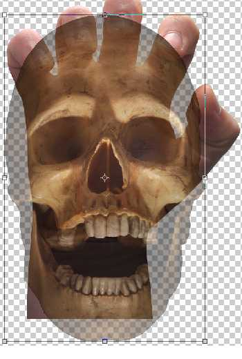 Placing the skull over the hand